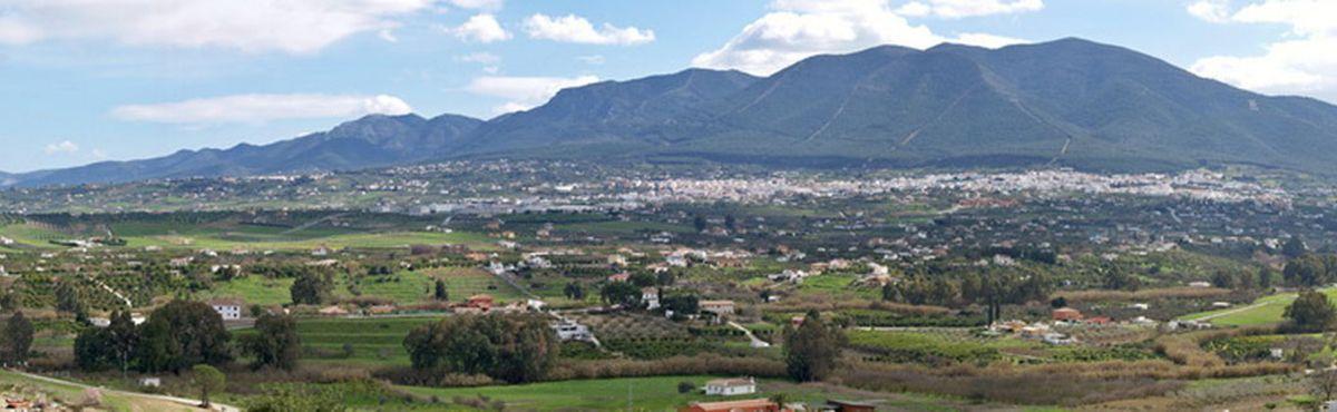 Alhaurín el Grande (Màlaga) i Puerto de la Cruz (Tenerife) integren la tramitació tributària TAO de T-Systems amb la plataforma Gestiona